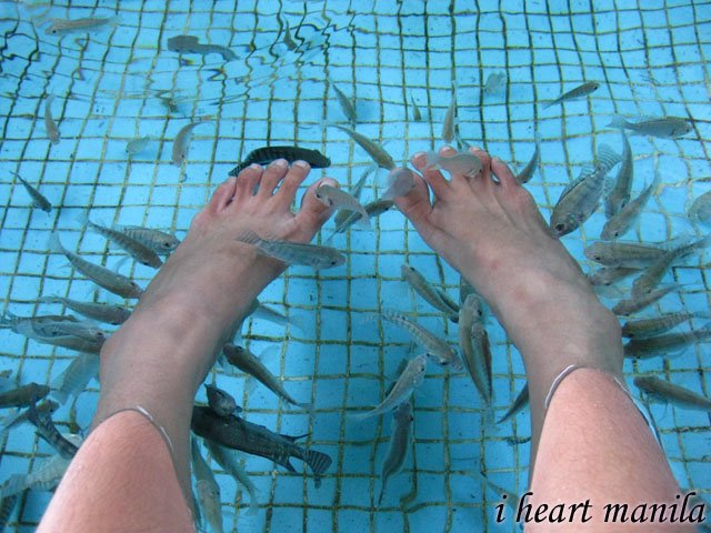 Manila Ocean Park's Fish Spa! my favorite activity at the Oceanarium :) i