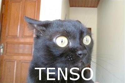 """gato_tenso Capcom prepara novo Resident """"Fail"""" para Celular"""