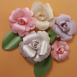 Roses-N-More