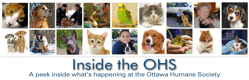 Ottawa Humane Society
