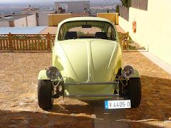 Escarabajo4