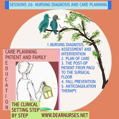 Nursing Diagnosis Handbook: An Evidence-Based Guide to Planning Care Ackley 10th