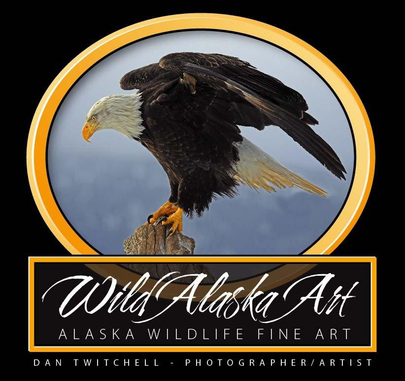 Dan Twitchell - Alaskan Artist/Photographer