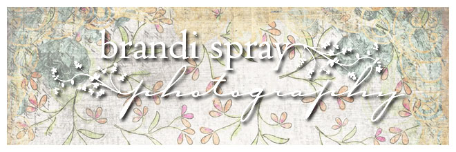 Brandi Spray Photography