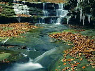 River in Autumn Nature HD Wallpaper