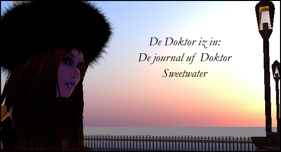 De Doktor iz in: De journal uf Doktor Sweetwater