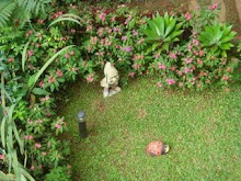 jardim dos gnomos