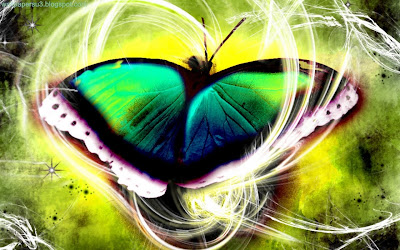 Butterfly 3D Standard Resolution Wallpaper