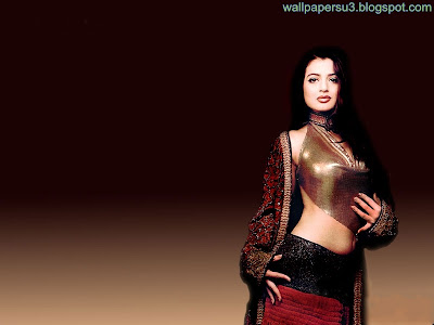 Amisha Patel Standard Resolution Wallpaper 03