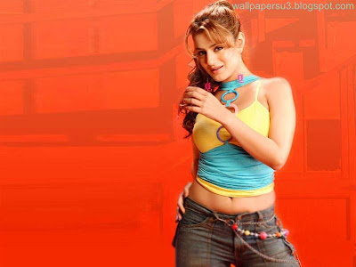 Amisha Patel Standard Resolution Wallpaper 05