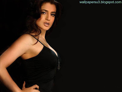 Amisha Patel Standard Resolution Wallpaper 08