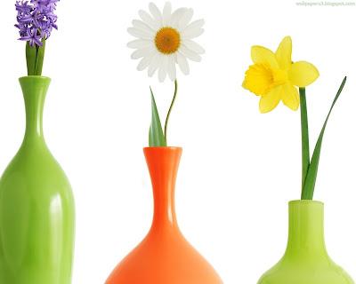 Flower Standard Wallpaper 103