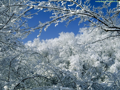 Winter Season Standard Resolution Wallpaper 16