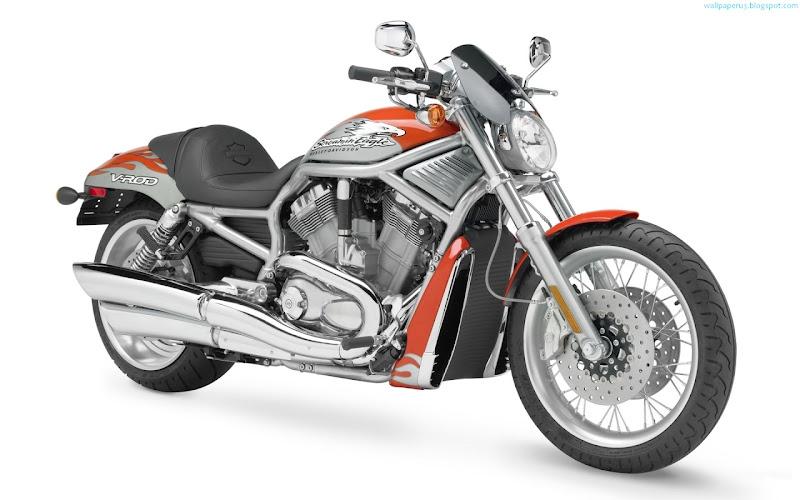 Harley Davidson Bike Widescreen Wallpaper 10