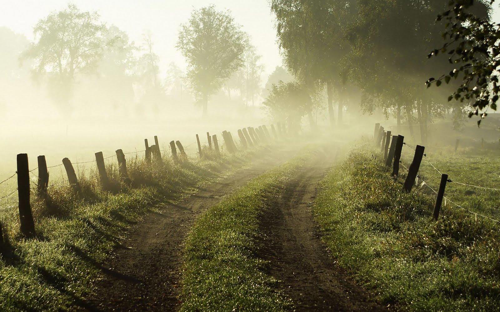 Morning Fog Desktop Wallpaper hd wallpaper - Beauty O'v NaTuRe ....... !!!!!!!!