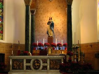 Altar poinsettia