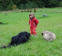 """""""Legg dere"""" våren 2008"""