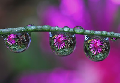 Incredible WaterDrop Image