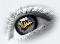 http://3.bp.blogspot.com/_AHcc73RXQGs/RlxwYRBTECI/AAAAAAAAAAM/YhKPXZd1Esk/s400/olho%2520de%2520borboleta.jpg