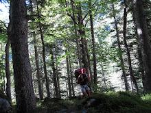 + gassssssss a Vall de Salenques