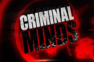 Criminal Minds Season 6 Episode 11 - 25 to Life