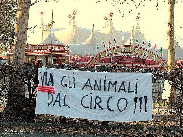 Via gli animali dal circo