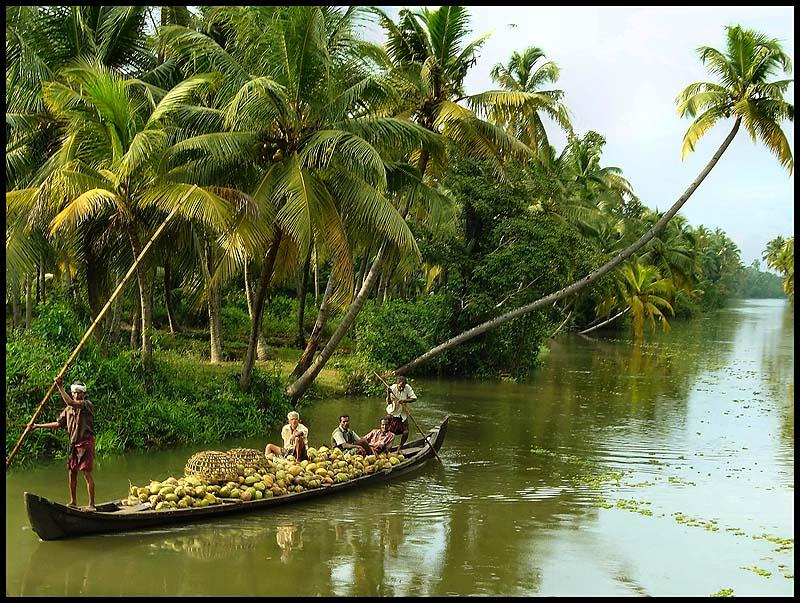 Alleppey Alappuzha Tourist Attractions Trawel India