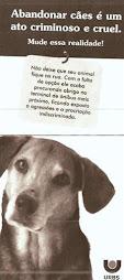 Não abandone seu animal.