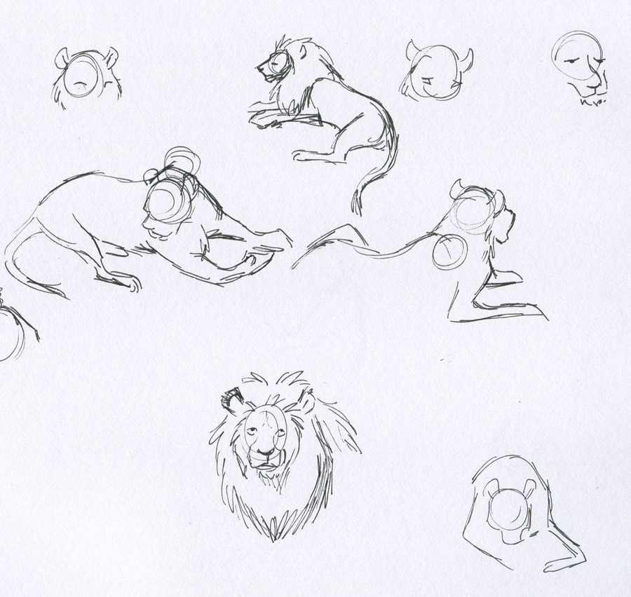 Lions Life Drawing. Went to the zoo today and drew some animals-especially