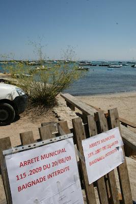 ecole de planche à voile et windsurf à Piantarella