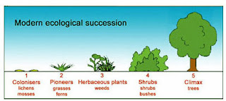 AP Biology 2007 (Period 1&2): October 2007