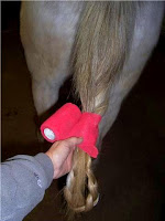 Step 4: Braiding a Horse's Tail