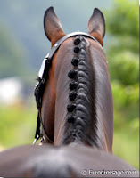 Dressage 'Button' Braids