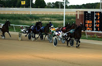 Pacing Standardbreds Cross the Finish Line