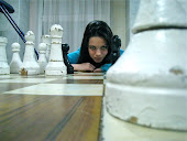 Шахматы-как модель жизни