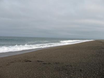 южный берег Ледовитого Океана