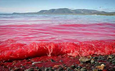 кровь-моря