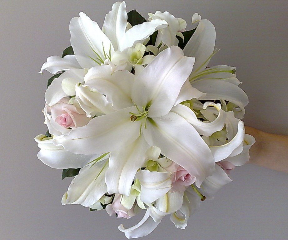 white tiger lilies. Day lilies,white tiger