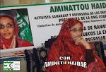 ACAPS con AMINETU HAIDAR