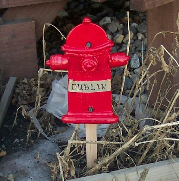 Personal Fire Hydrant