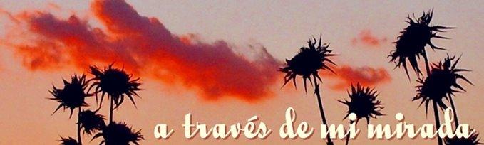 A TRAVES DE MI MIRADA
