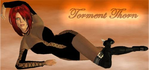 Torment in Second Life