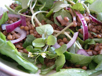 Warm Puy Lentil Salad with Baby Spinach and Watercress