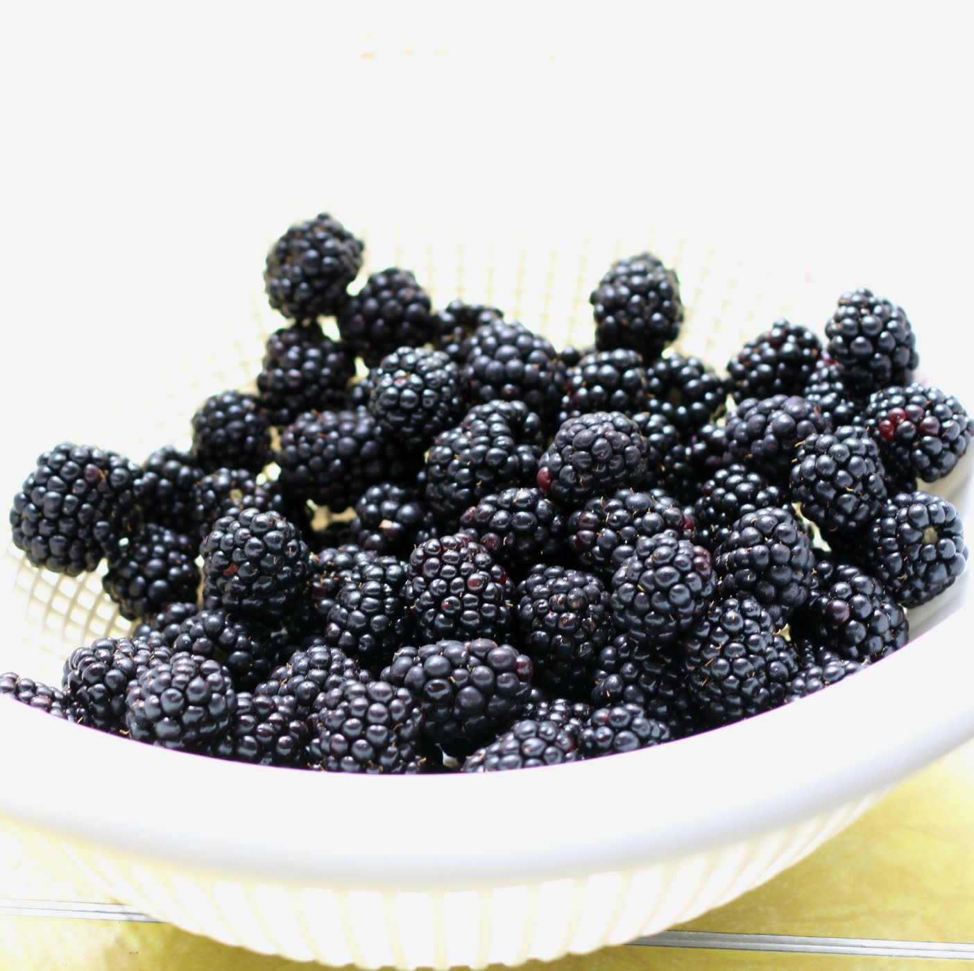 ShowFood Chef: Blackberry, Blueberry, Port Wine Jam - Sing it!
