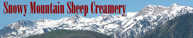 Snowy Mountain Sheep Creamery