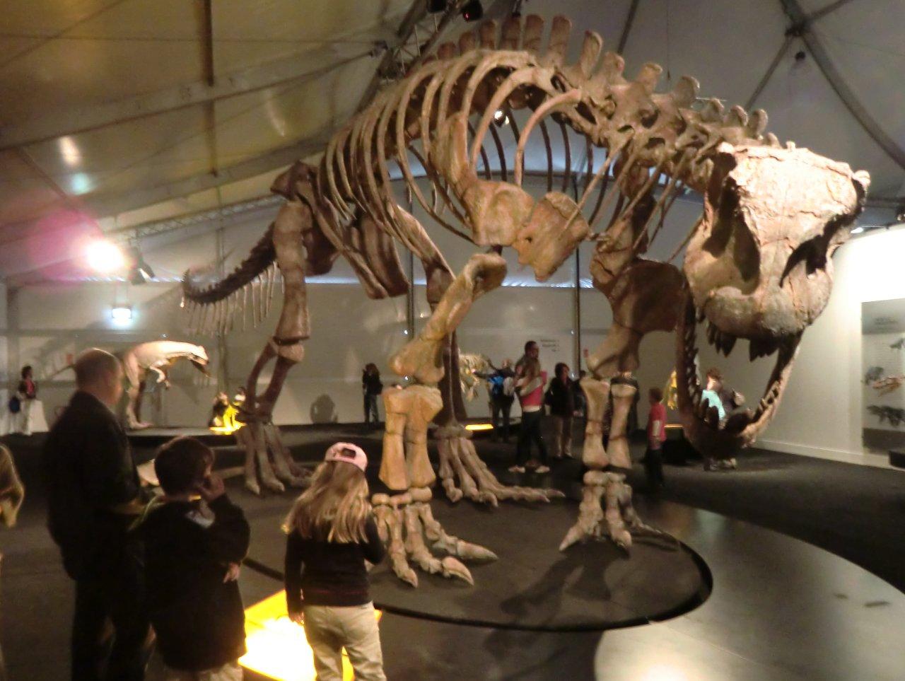 Lessemsaurus.jpg