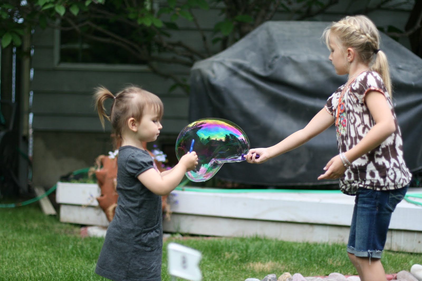 http://3.bp.blogspot.com/_A_a_pAVawuM/TEXgChkh2rI/AAAAAAAADME/WKTdie7KmIc/s1600/Calgary+Visit+2010+318.jpg
