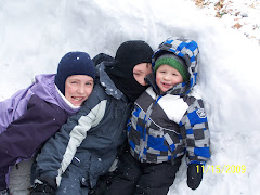 Aiden, San and Bug making a snow fort