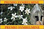 PREMIO SYMBELMINE