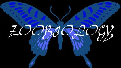 Zoobiology